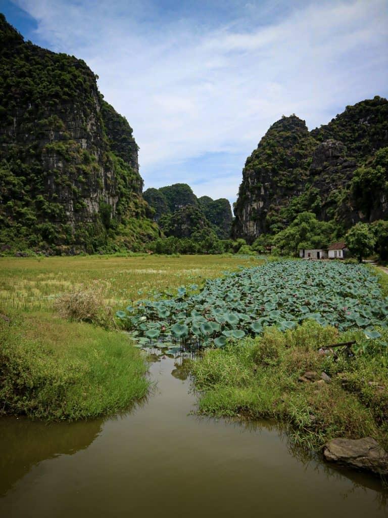 Ninh Binh natuur