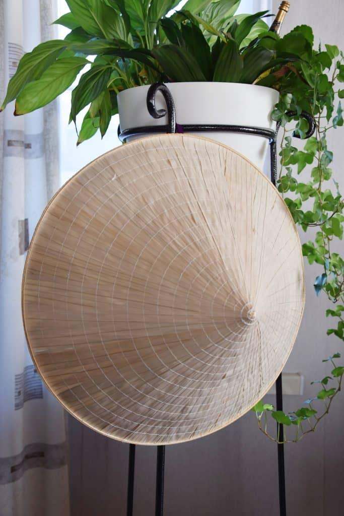 vietnamese hoed
