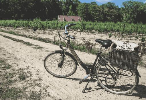 fietsen wetteren